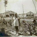 Stanleyville: Vue prise du jardin vers l'avenue des Eucalyptus