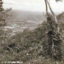 Kyimbi - Mai 1956