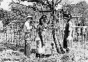 Pierre Jansé - Hutte en construction à Makungu (Sud-Kivu)
