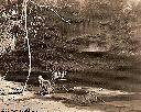 BENDERA - Près du pont de la Mudjale