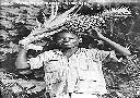 MANIEMA - Jeune garçon (ananas Rotschild)