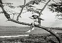 Albertville 1954