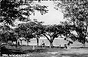 Albertville - Lac Tanganyika - Promenade