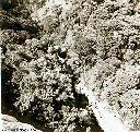 Vues de la Kyimbi (2)