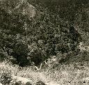 Kyimbi - Oct 1956